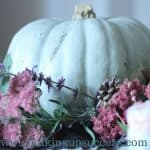 Autumn tablescape - a blue-grey pumpkin surrounded by dark rose coloured sedums, springs of lavender, catmint & pinecones - three shimmering blue-grey gobles each with a single pale pink rose