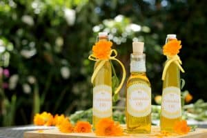 Three pretty bottles of calendula oil surrounded by calendula flowers and petals