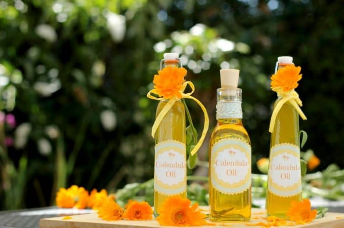10 common uses for Calendula oil – with recipe
