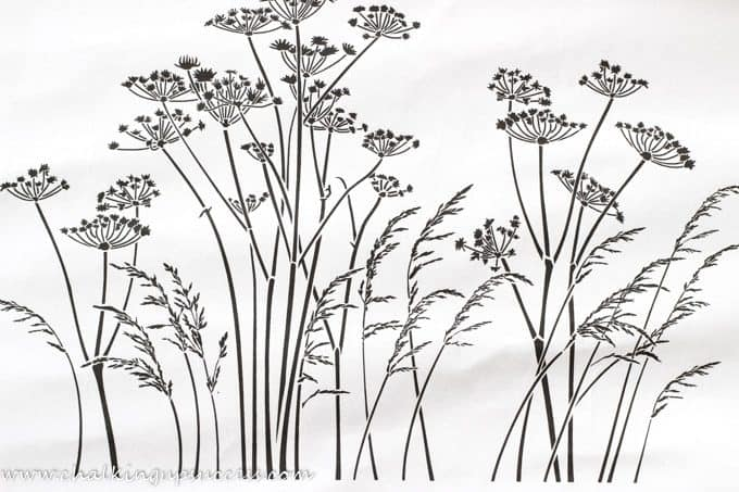 Showing a picture of how the stencil 'cow parsley and grasses' will look after painting