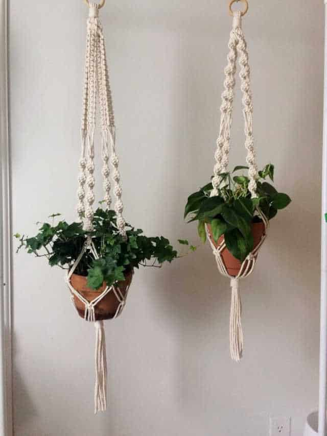 How to give a thoughtful gift that won't end up at Oxfam! Don't just give 'something' for the sake of giving. Here are some stylish eco friendly gift ideas that show you care about her AND the planet. Macrame plant hangers.