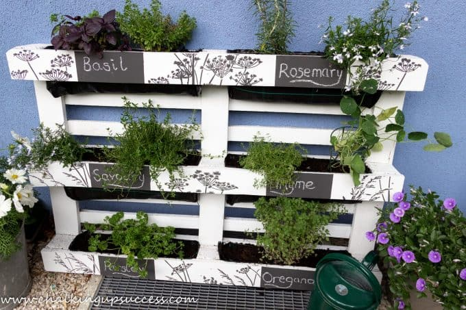 The pallet is finished. It has been painted white and signs have been painted on in black chalk paint. The names of the herbs are simply writting on with white chalk.
