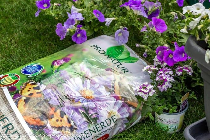 Peat-free potting compost for annual containers