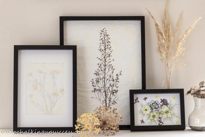 Three pressed flower prints standing against a wall.