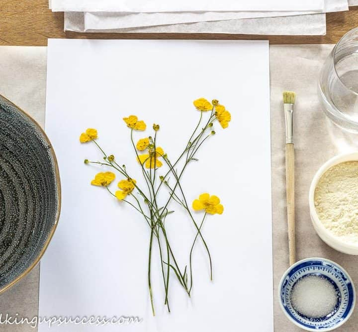 Yellow buttercups laid out on a table