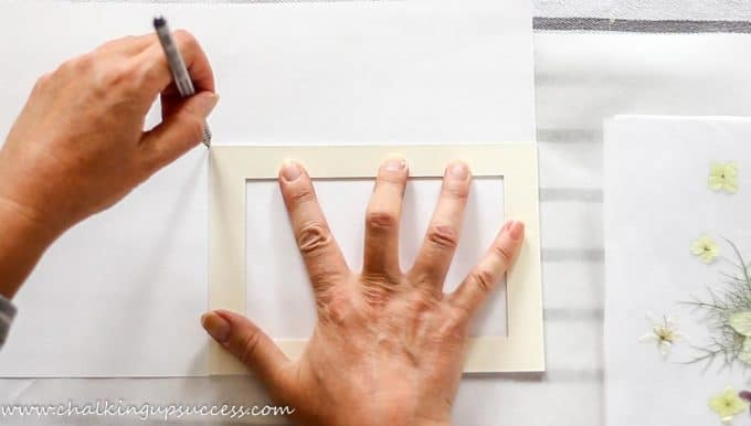 Hands drawing around a passepartout to make a background for pressed flower prints.