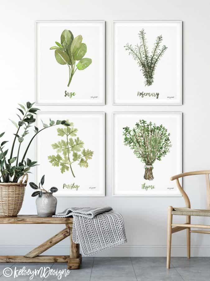 affordable botanical art - modern farmhouse style herbs