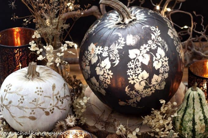 Cute painted pumpkins in white, black and gold