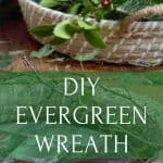 Fresh Evergreen for making wreaths