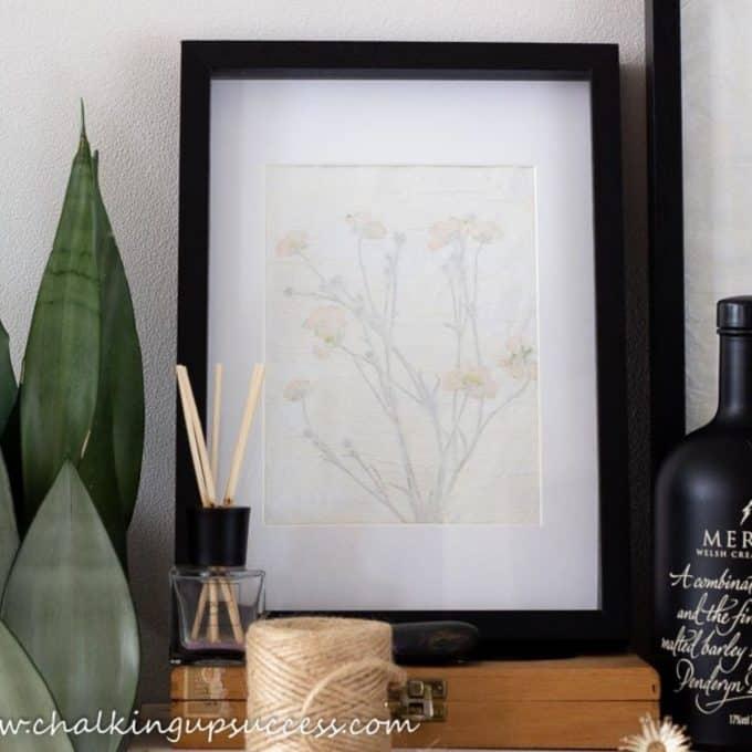 A display of pressed flower wall art in black frames.