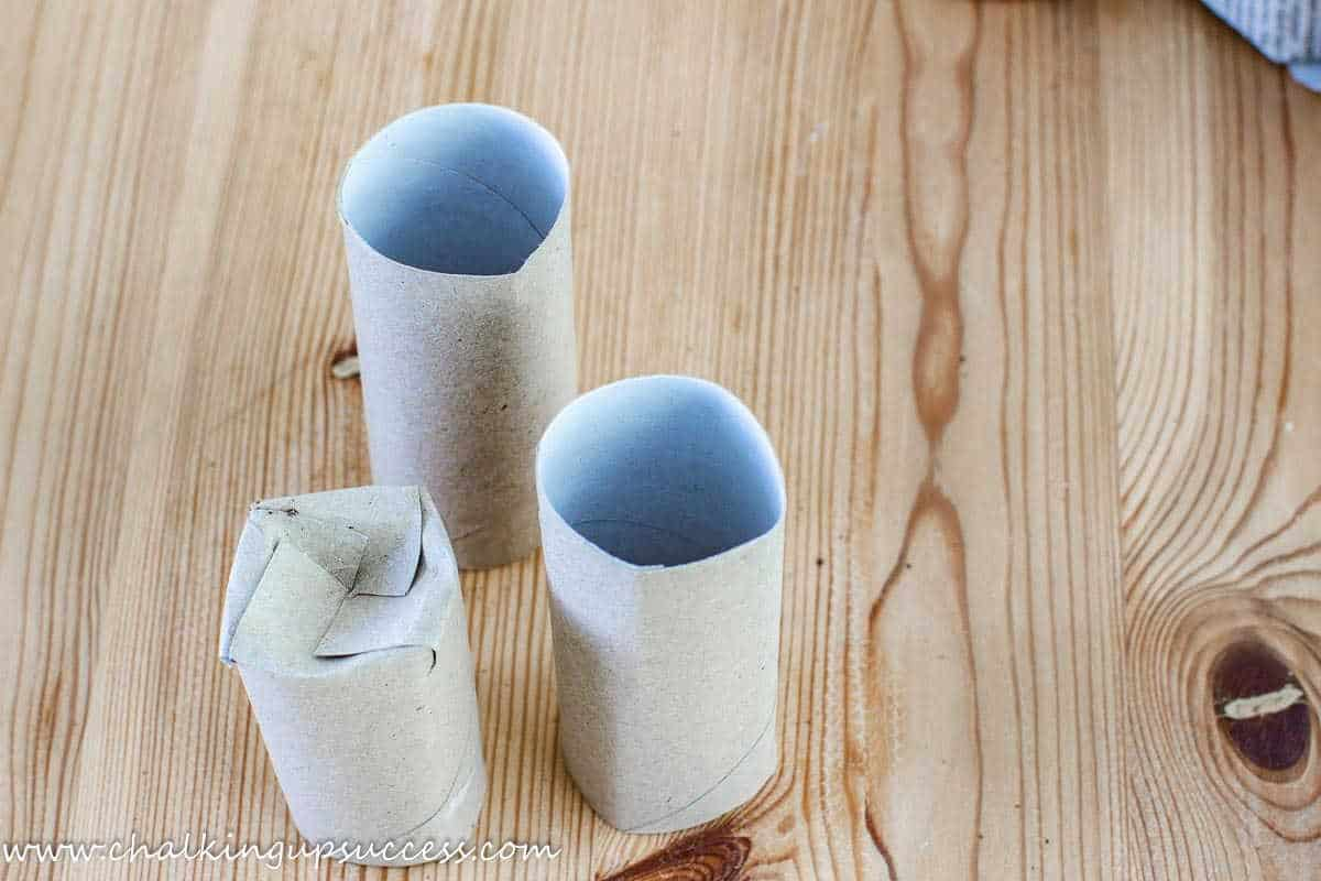 Three empty toilet paper rolls. One has been made into a seedling pot.
