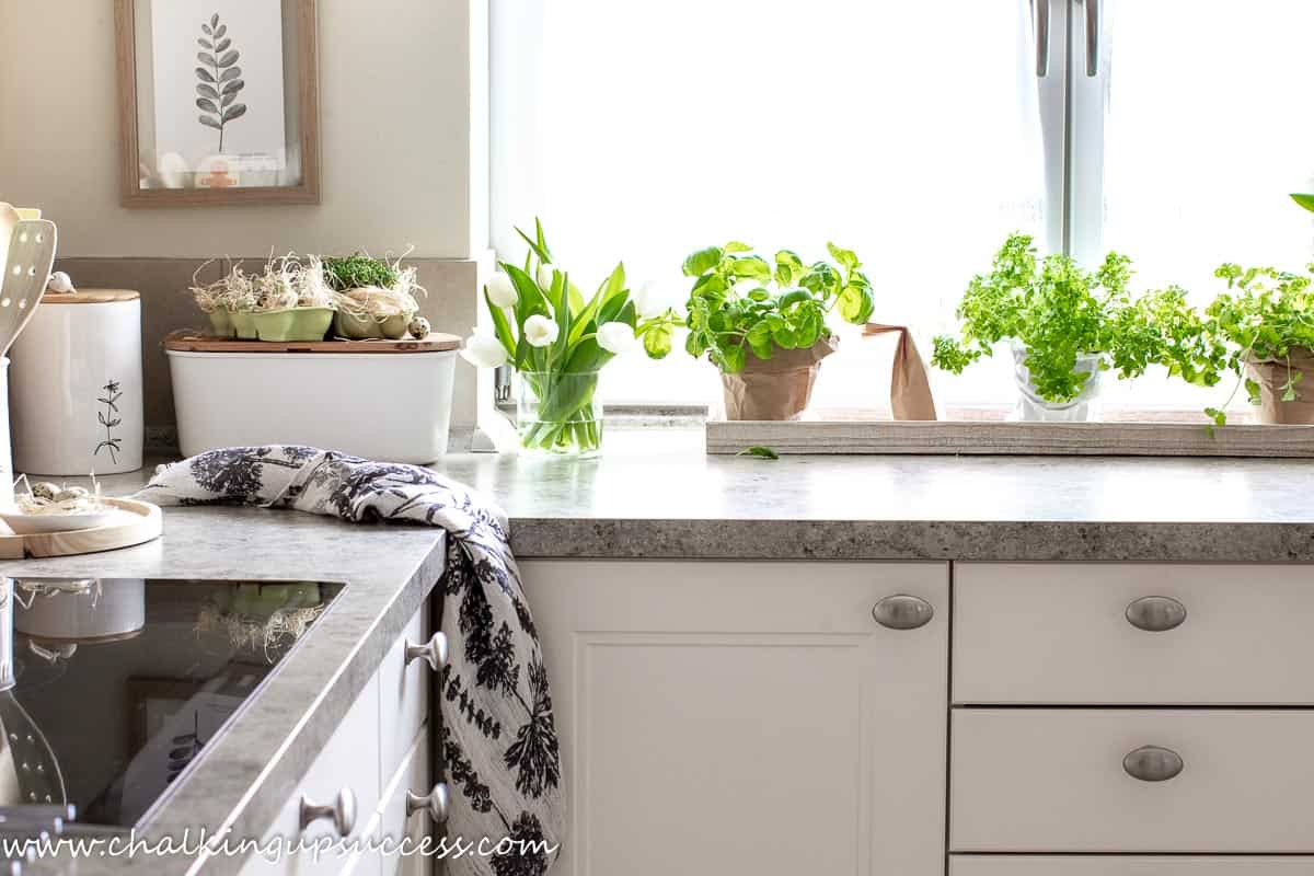 Spring home tour - kitchen. Pots of fresh green herbs wraped in brown paper. Pretty fern picture hanging on the wall above the white and wood bread box.
