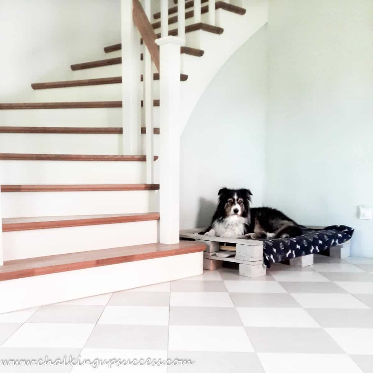 Before the hallway refresh. A photo of our black and tan, Australian Shepherd 'Brilli' laying on her pallet bed at the bottom of the stairs.