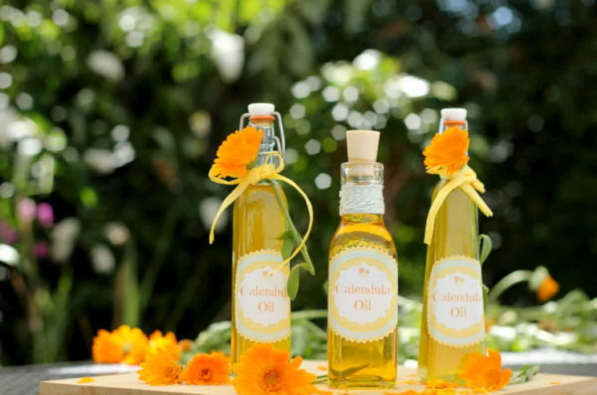 Three glass bottles filled with homemade amber coloured Calendula oil - - crafts and DIYs for adults and teens