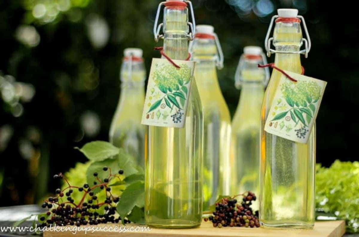 Five clear glass bottles filled with pale yellow coloured Elderberry Syrup - crafts and DIYs for adults and teens