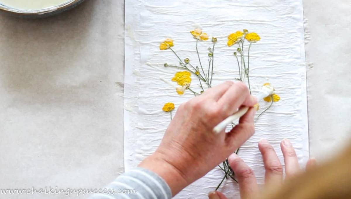 A person pasting glue over dried yellow buttercups to make a paper print - crafts and DIYs for adults and teens