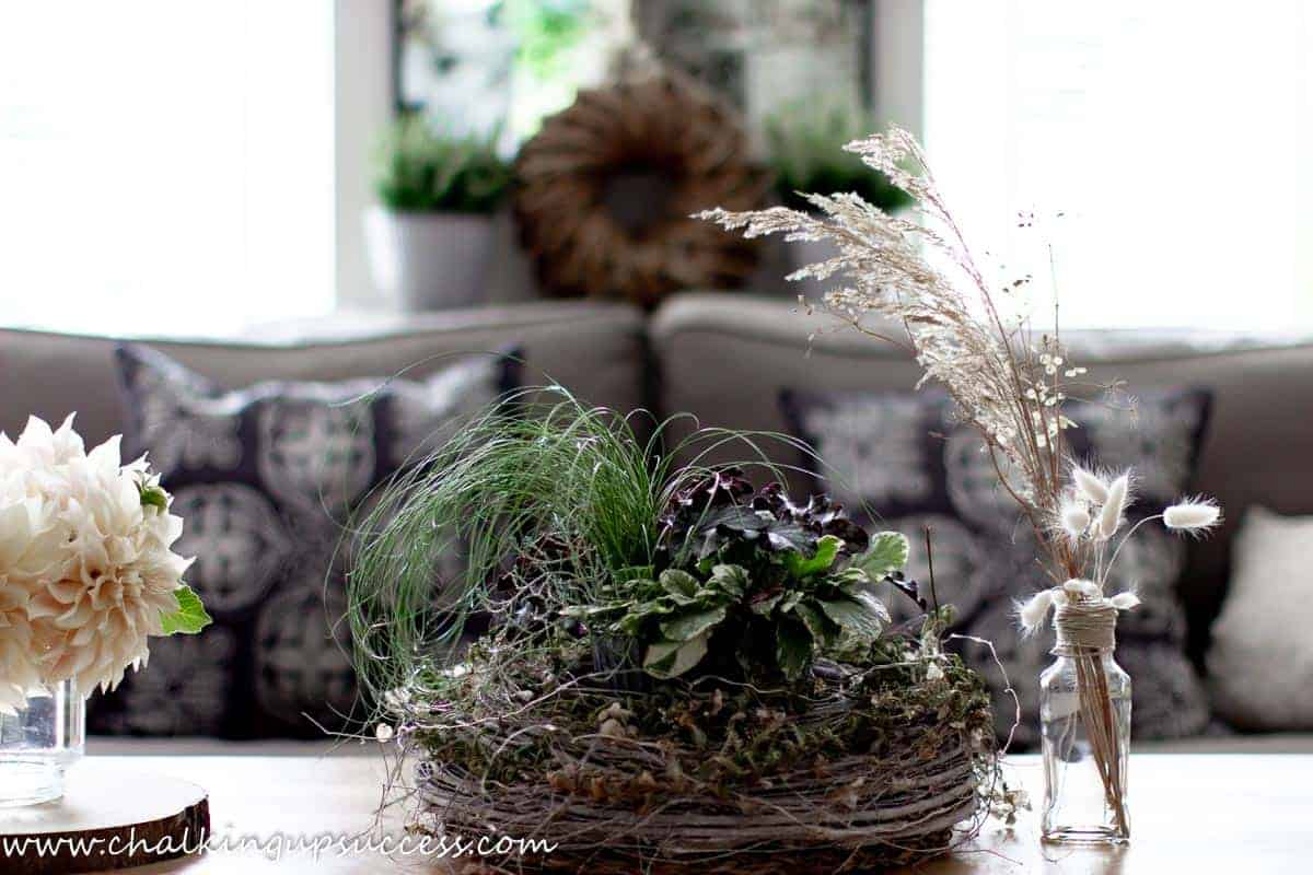 Fall decor ideas in the living room - a coffee table centerpiece made with fresh Autumn plants in purple and green- Heucheras and grassess look great in Fall.
